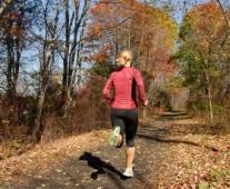 Fall_Run